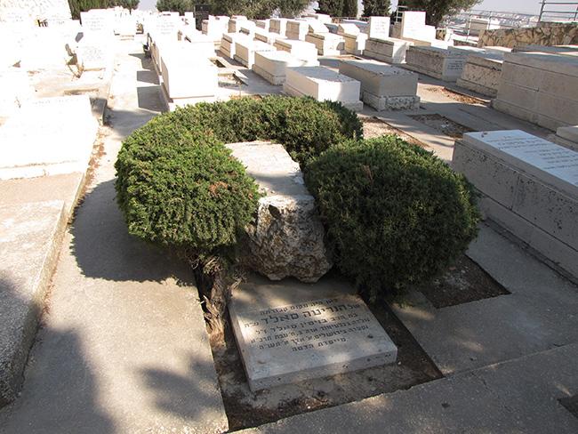 קברה של הנרייטה סֹאלְד